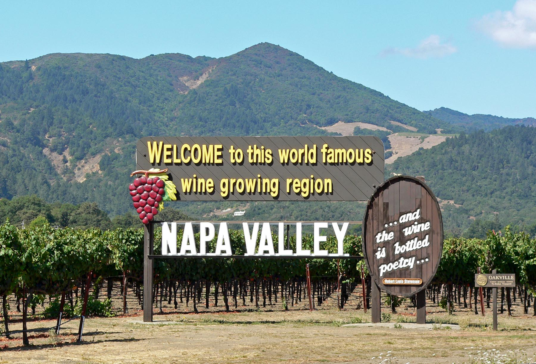 Wine Tasting Tours in Napa Valley